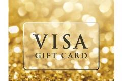 3-visa-GC